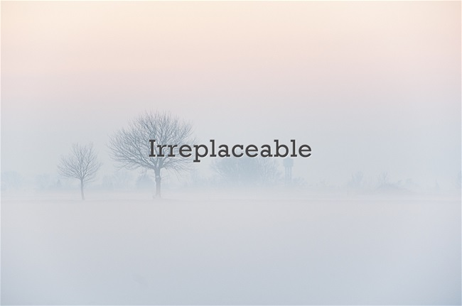 Your Irreplaceable