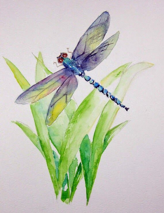 Learning From theDragonfly